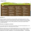 Digging Into WordPress / Погружение в WordPress
